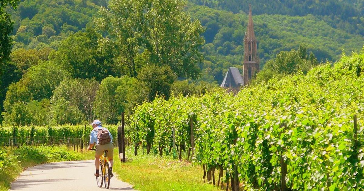 Alsace-xu-so-cua-dong-vang-trang-Alsace